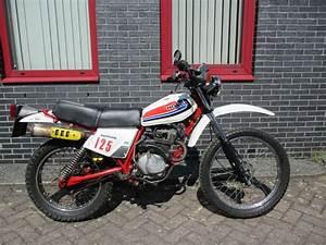 Honda Xl 125 : honda xl 125 s 125 cc 1978 catawiki ~ Medecine-chirurgie-esthetiques.com Avis de Voitures