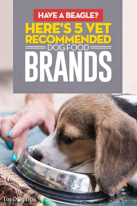 dog food  beagles   vet recommended foods