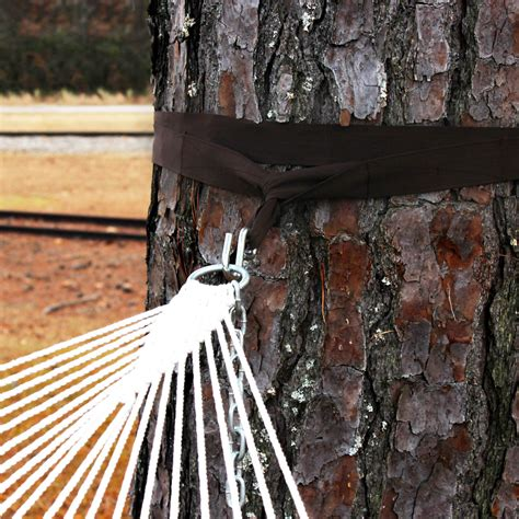 Hanging A Hammock From Trees by Hammock Tree Straps On Sale Dfohome