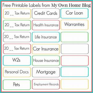 file cabinet labels template free savaeorg With file cabinet label size