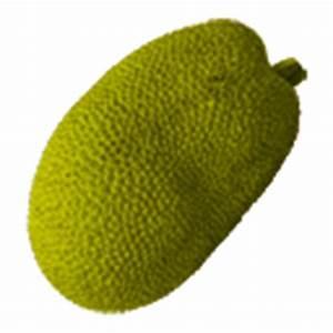 Jackfruit Clipart Picture, Jackfruit Gif, Png, Icon Image