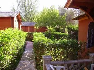 bild quotbungalow aussenquot zu hotel soller garden in puerto de With katzennetz balkon mit soller garden bungalows