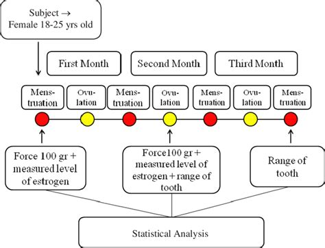 Tooth Movement Diagram by Work Flow Diagram On Differences Orthodontic Tooth