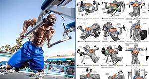 Muscle Fitness Chest Workout