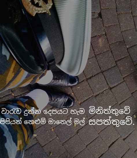 sara wadan home facebook