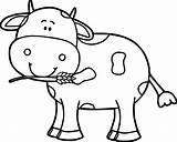 Coloring Cow Head Printable Cows Sheet Getcolorings Fresh sketch template