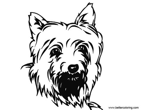 yorkie coloring pages inks drawing  printable