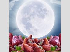 Omnisara Upcoming Events Full Worm Moon Labyrinth Walk