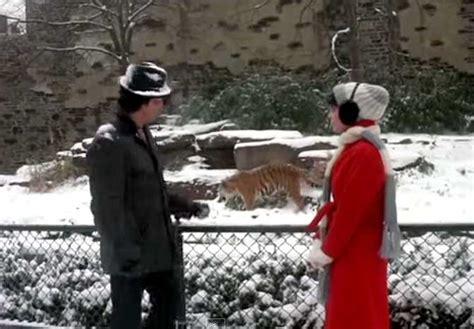 rocky ii kundur  tiger total rocky