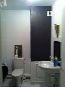 Quelle Peinture Pour Salle De Bain : peinture de salle de bain ~ Dailycaller-alerts.com Idées de Décoration