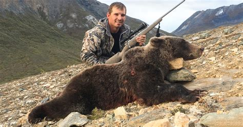 grizzly bear mountain hunt british roman columbia ricky gohunt