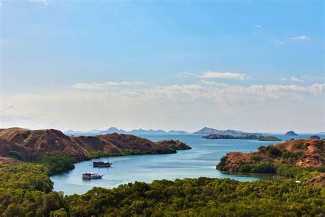 komodo dragons  rinca island indonesia travel guide