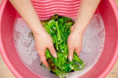 how to handwash clothes hand washing clothes persil