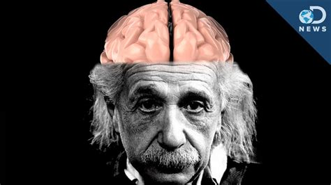 How Einstein's Brain Is Different Than Yours Youtube