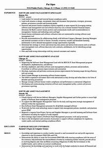 Software asset management resume samples velvet jobs for Software asset management resume examples