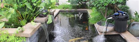 top   pond filter system reviews  pressurized