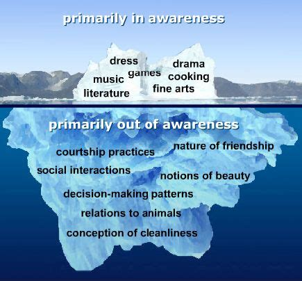 iceberg theory  culture cultural competence social