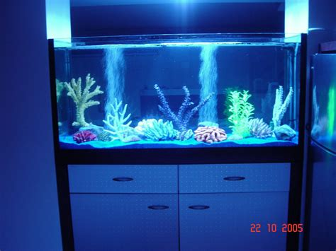 d 233 coration faux aquarium