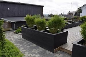 Bac Rectangulaire Pour Bambou : plantes de jardin le bambou fascinant et polyvalent ~ Nature-et-papiers.com Idées de Décoration