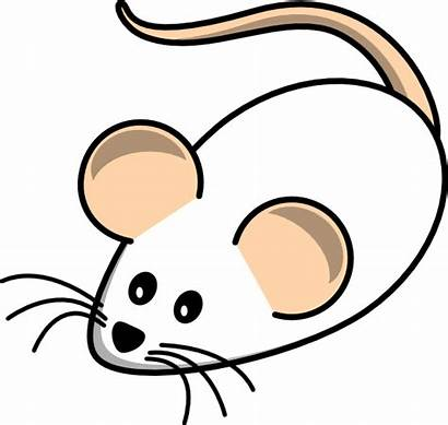 Clipart Field Mouse Mice Cartoon Clip Clker