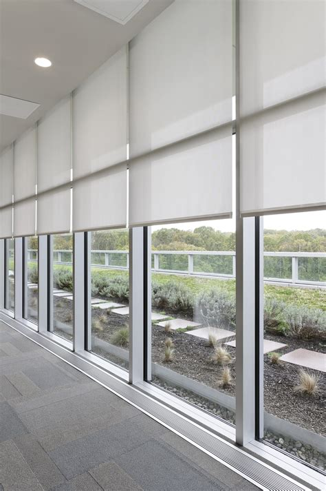 decor save energy   advantage  sunlight