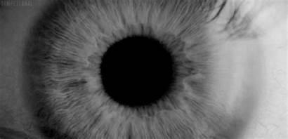 Eye Eyes Bw Gifs Dilating Giphy Remix
