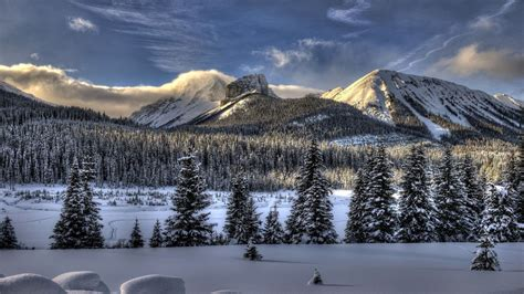 Hd Winter Photo by Snow Wallpapers 4usky