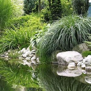 Gräser Für Steingarten : naturagart shop gr ser sortiment mittelhoch 6 online ~ Michelbontemps.com Haus und Dekorationen