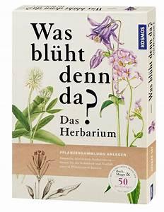 Was Ist Ein Herbarium : was bl ht denn da das herbarium pflanzen natur ratgeber naturf hrer b cher kosmos ~ A.2002-acura-tl-radio.info Haus und Dekorationen