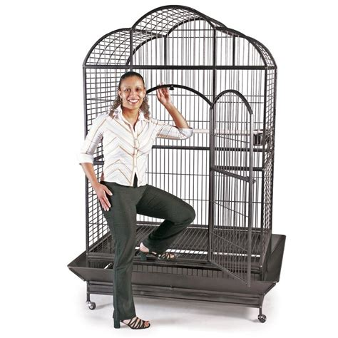 Gabbia Pappagalli Voliera Gabbia Recinto Parrot Cage Pappagalli Uccelli H