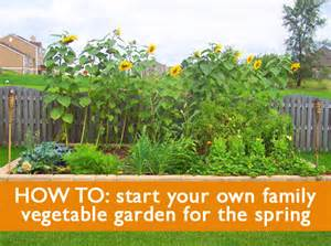 how to start a family vegetable garden this