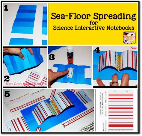 Sea Floor Spreading Plate Tectonics Worksheet Answers by 17 Best Images About General Science Stuff On