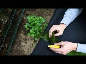 Comment Poser Du Gazon Synthétique : tutoriel comment poser du gazon synth tique sur un jardin par greenside youtube ~ Nature-et-papiers.com Idées de Décoration