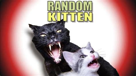 Talking Kitty Cat 43  Random Kitten Sylvesterlol
