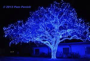 spectacular lighted trees bring in johnson city diggingdigging