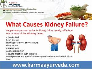What are the Causes of kidney failure