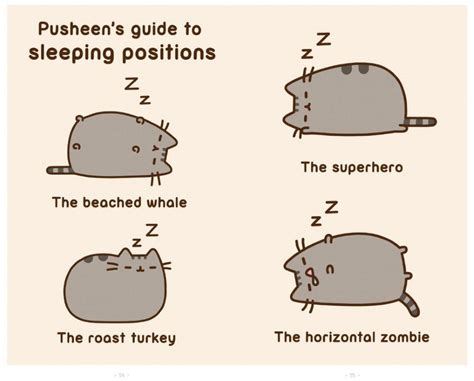 I Am Pusheen The Cat  Book By Claire Belton Official