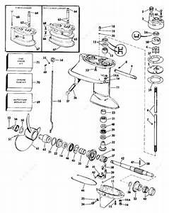 Evinrude 1984 40 - E40rwlcra  Gearcase