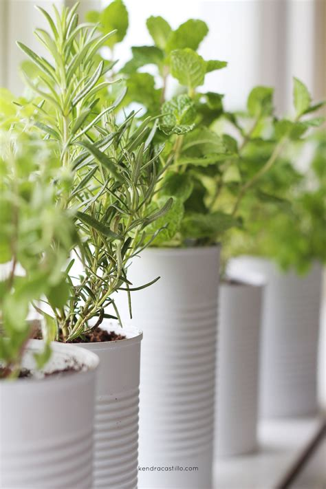 Window Sill Herb Garden Pots by Window Sill Herb Garden Summer Entertaining 2017