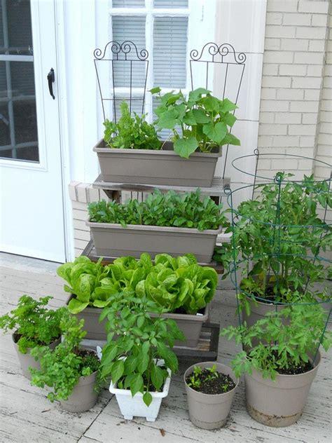 104 Best Garden In The Window Images On Pinterest