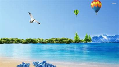 Seagull Wallpapers Beach Flying Galaxy Note Allhdwallpapers