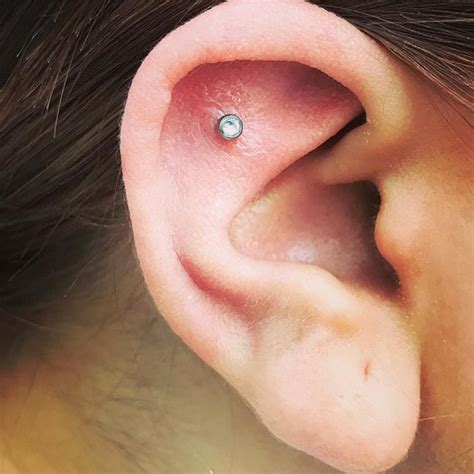 sweet  outer conch piercing studio xiii gallery