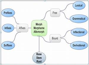 Mohammad Abdollahi  Morphology