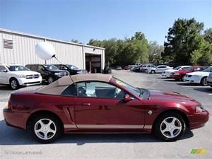 2004 40th Anniversary Crimson Red Metallic Ford Mustang V6 Convertible  49515097 Photo  11