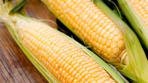 cuisiner des epis de mais maïs en épi valeur nutritive bienfaits santé et