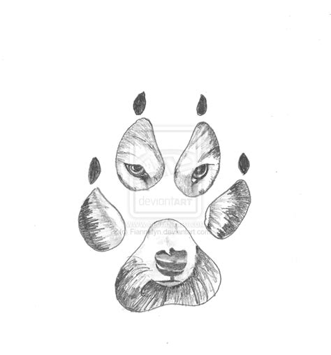 wolves paw print drawing drawings drawings paw print