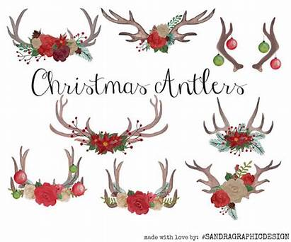 Clipart Antler Watercolor Antlers Clip Floral Sandra