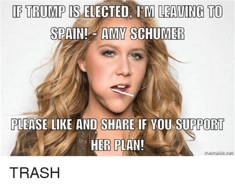 Amy Schumer Meme - funny amy schumer memes of 2017 on sizzle amie