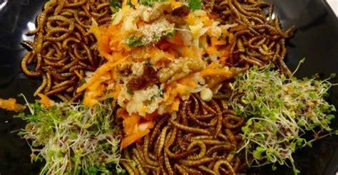 cuisine insectes comestibles insectes comestibles entomophagie