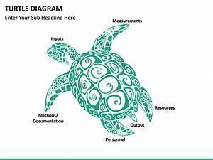 Label Turtle Diagram